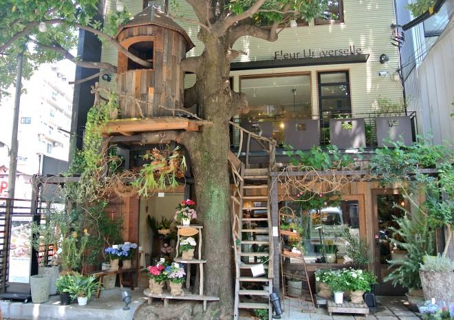 緑と癒やしのカフェ